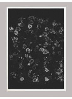 Black and White Flower Wall Art