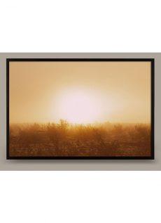 sunscape-02-img
