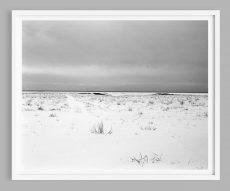 Minimal Black and White Photograph